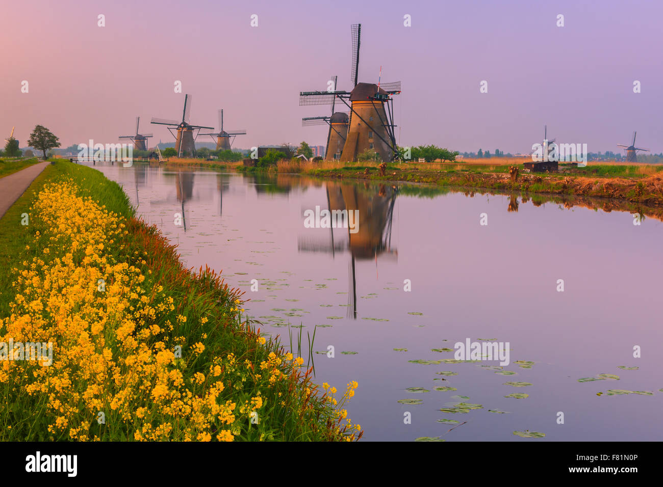 Die berühmten Windmühlen bei Kinderdijk, Südholland, Niederlande Stockbild