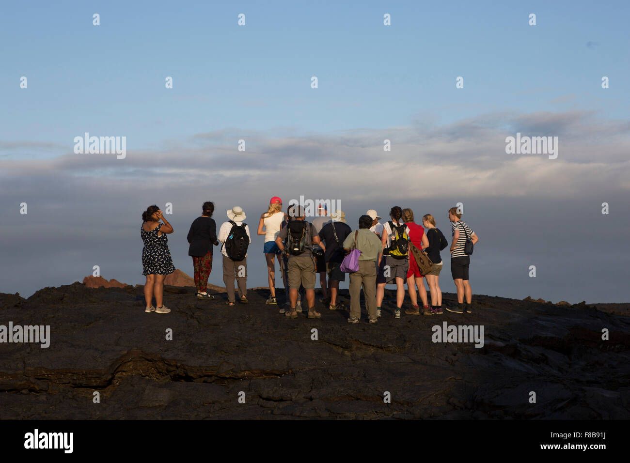 Tierwelt auf den Galapagos-Inseln, Ecuador. Touristen Stockbild