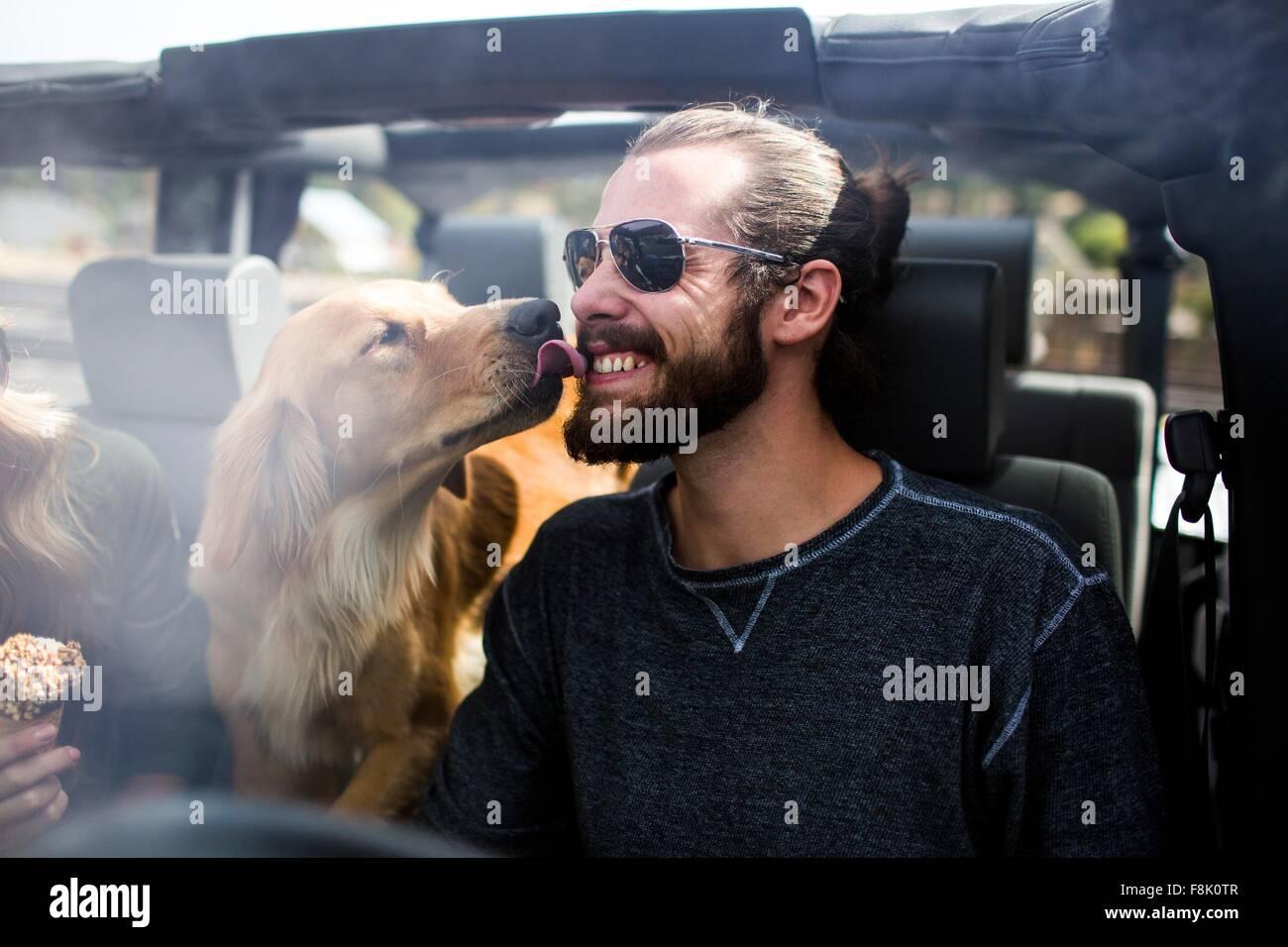 Hund leckt junge mans bärtigen Gesicht im jeep Stockbild