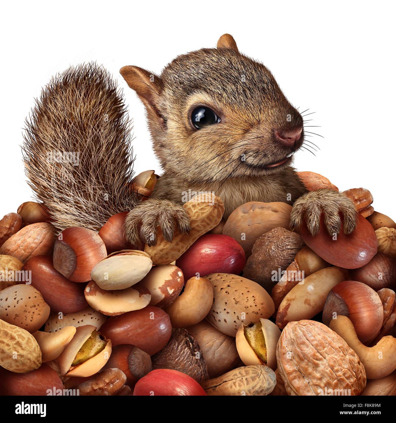 Wohlstand und Einsparungen Geschäftskonzept als Eichhörnchen halten eine Gruppe Erdnüsse und verschiedene Stockbild