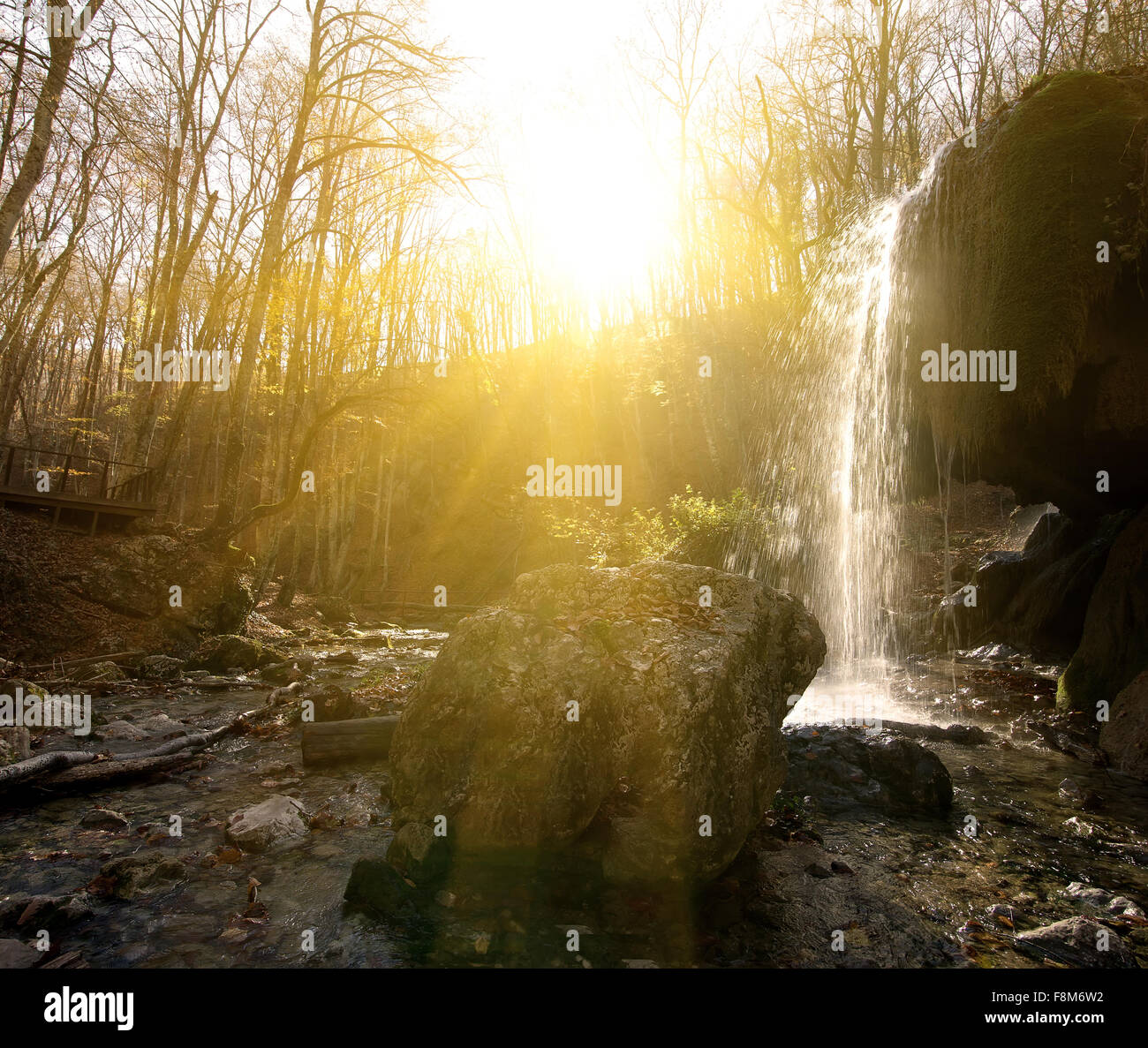 Wasserfall im Wald am sonnigen Morgen Stockbild