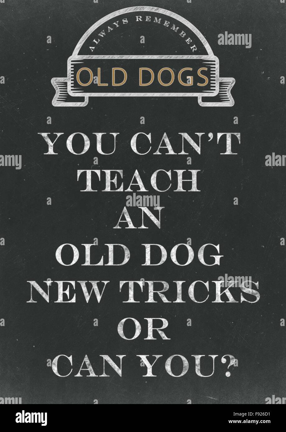 Sie können keine alten Hund neue Tricks Hand geschrieben auf einer Tafel Lehren. Stockbild