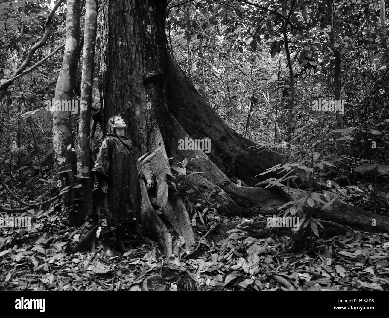 Ein Mädchen in der Borneo-Regenwald Stockfoto