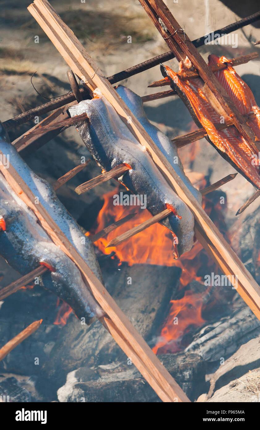 Lachs gebacken traditionell über dem Feuer während Salmon Festival auf Malcolm Insel in dem kleinen Dorf Stockbild