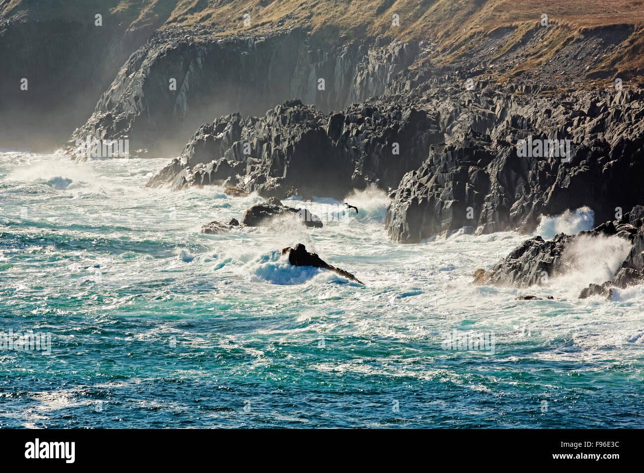 Wellen brechen sich am Küste Leuchtturm Cape Race National Historic Site, Neufundland, Kanada Stockbild
