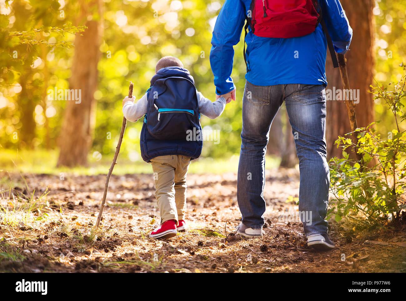 Vater und Sohn zu Fuß während der Aktivitäten Wandern im herbstlichen Wald bei Sonnenuntergang Stockbild