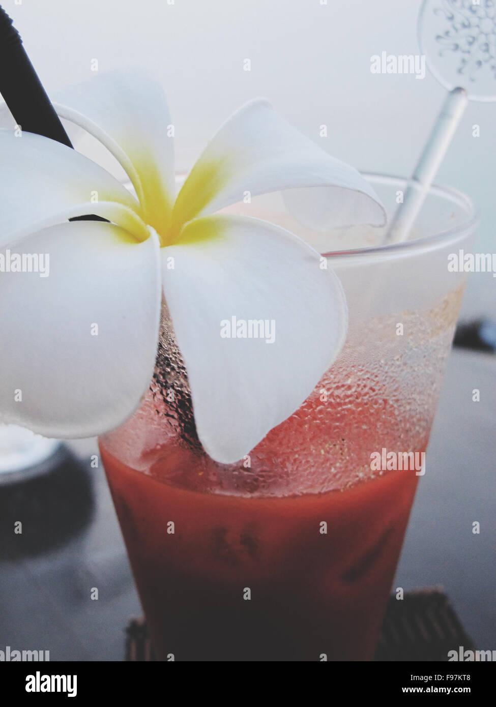 Frische Margarita mit weißen Blumen geschmückt Stockbild