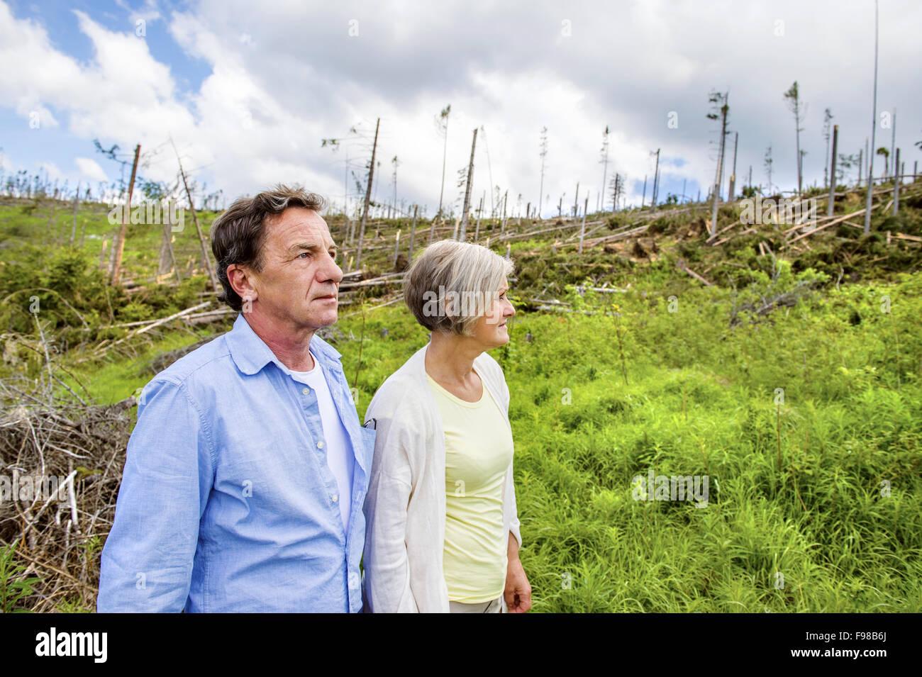 Älteres Paar am zerstörten Wald als Effekt der starken Sturm in der hohen Tatra, Slowakei Stockbild
