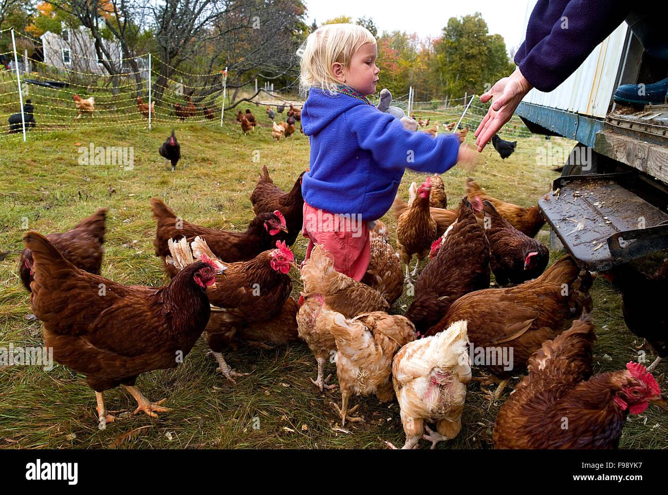 Distribute Stockfotos & Distribute Bilder - Alamy
