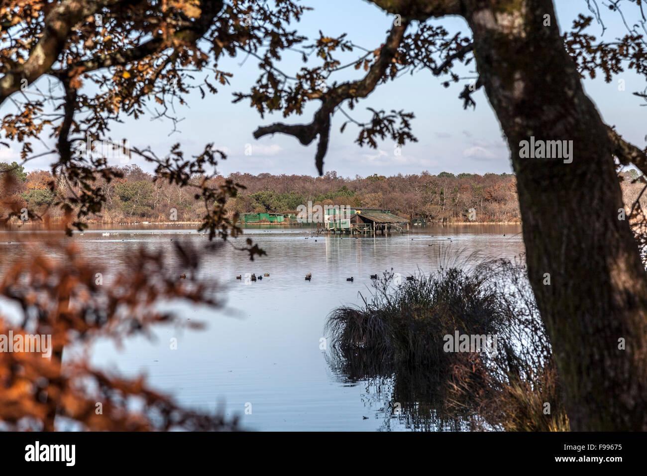Im Herbst - etwa ein Dutzend anderer - eine Ente Jagd-Hütte auf dem weißen Teich in Seignosse (Landes Stockbild