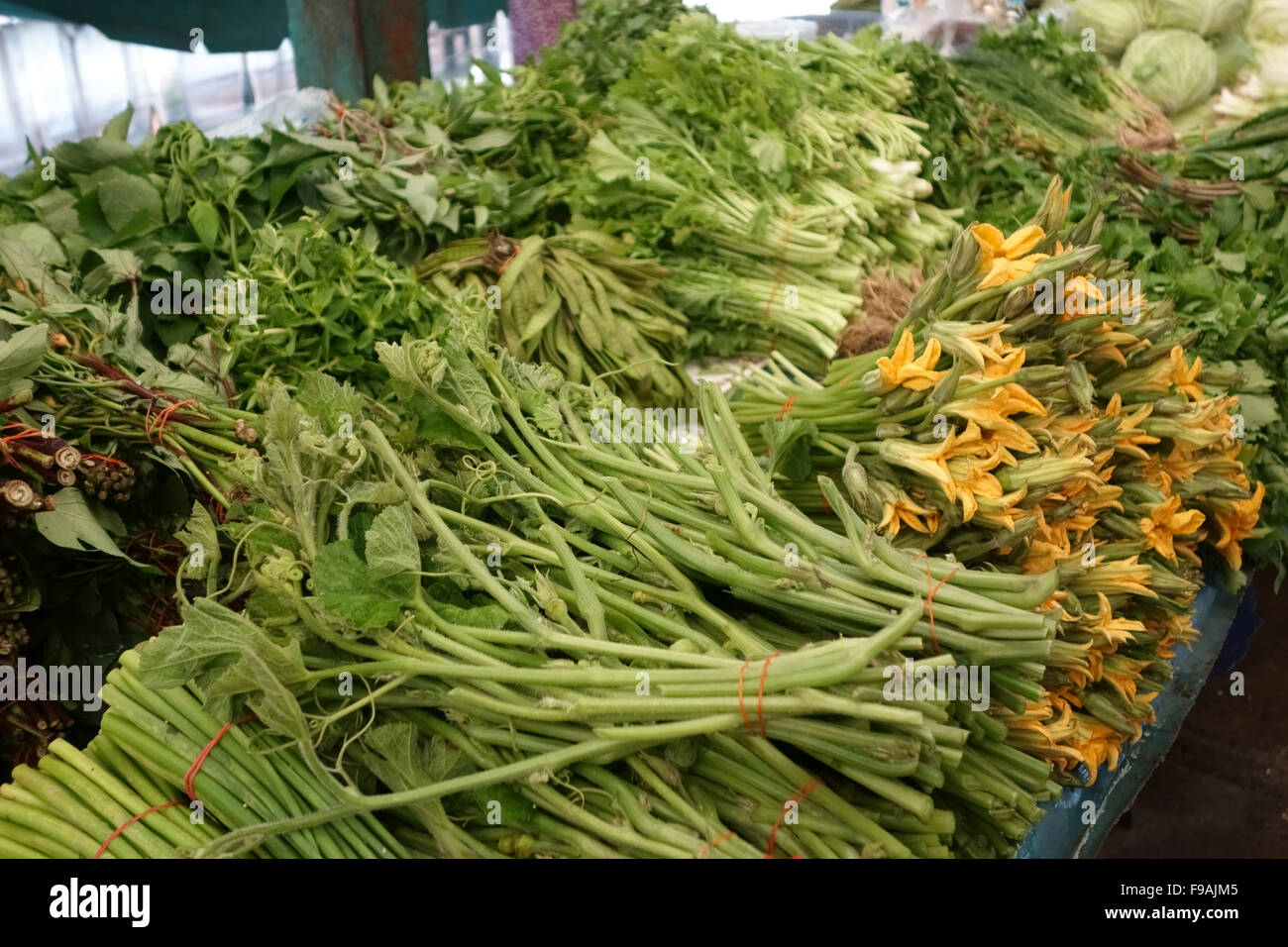 Blätter der Chayote, das Diuretikum und andere medizinische Immobilien zum Verkauf in einen Lebensmittelmarkt Stockbild