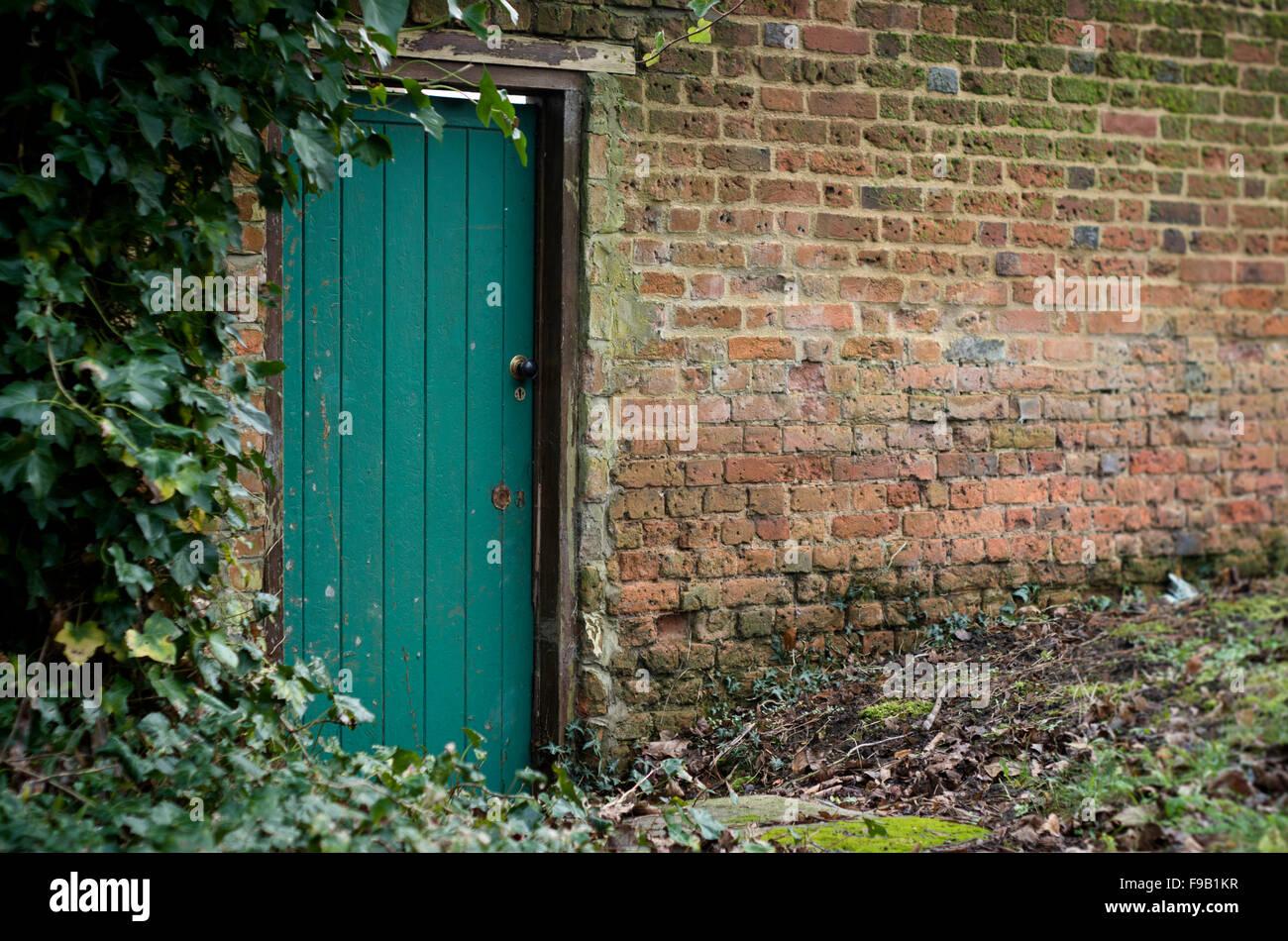 Grün bemalte Holztür in alten Cottage Garten Mauer umrahmt von Efeu, UK Stockfoto