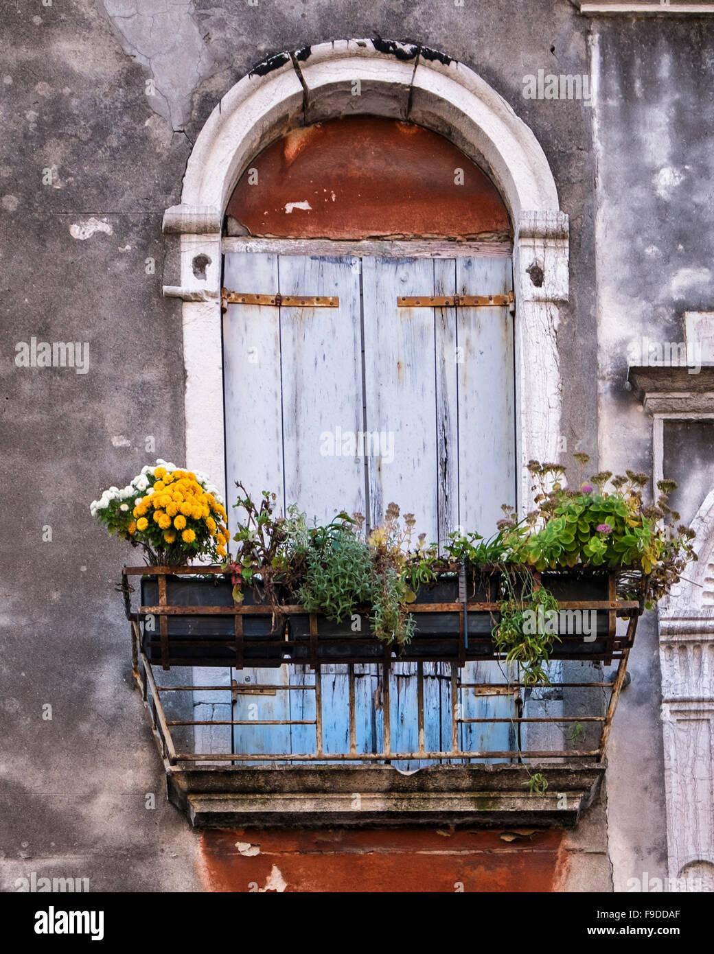 Venedig, Haus, außen Detail Staubschutzklappen gewölbte Tür mit ...