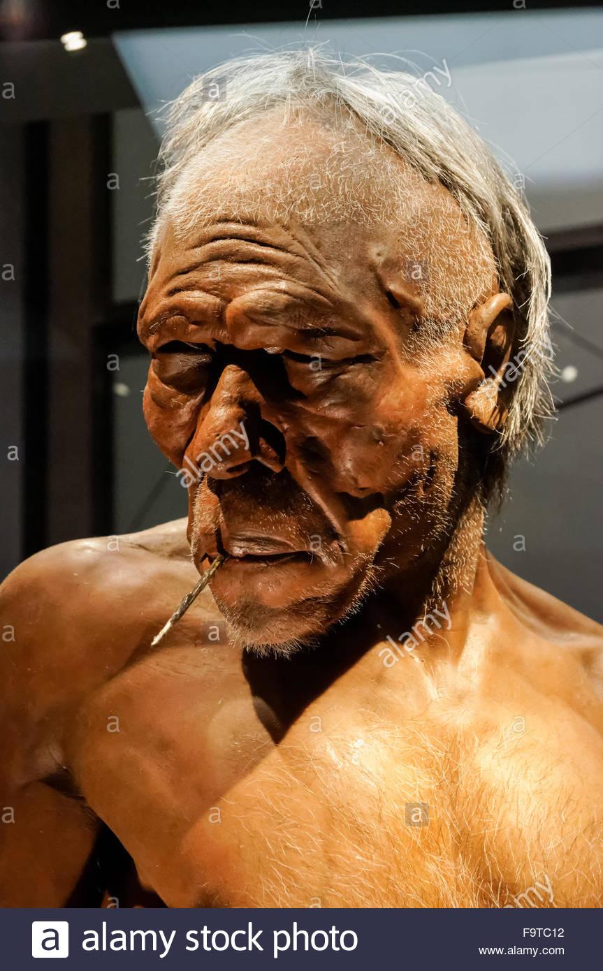Menschlichen Evolution Gallery im Natural History Museum in London Vereinigtes Königreich Vereinigtes Königreich. Stockbild