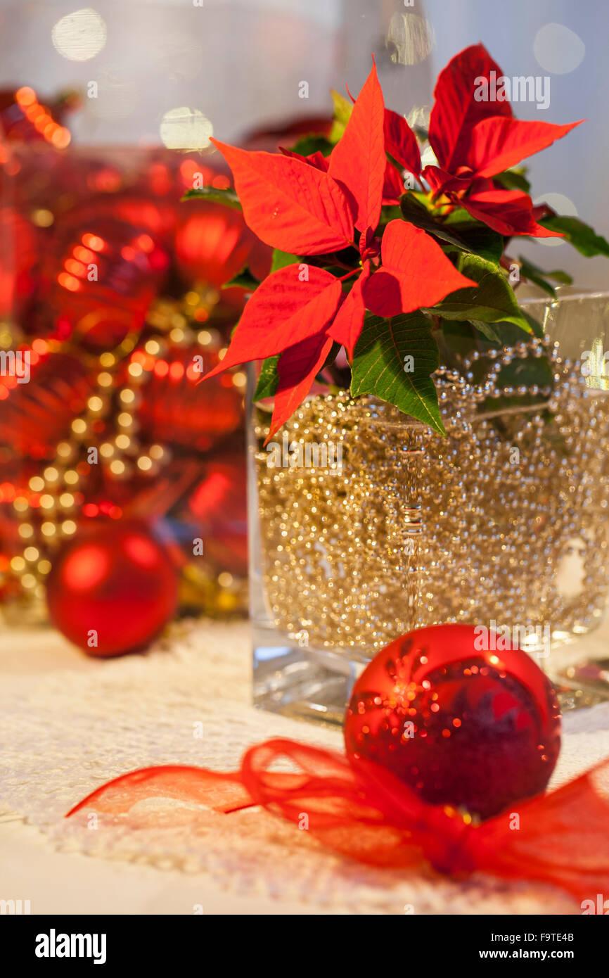 material weihnachtsstern gold kugel kette glas vase. Black Bedroom Furniture Sets. Home Design Ideas