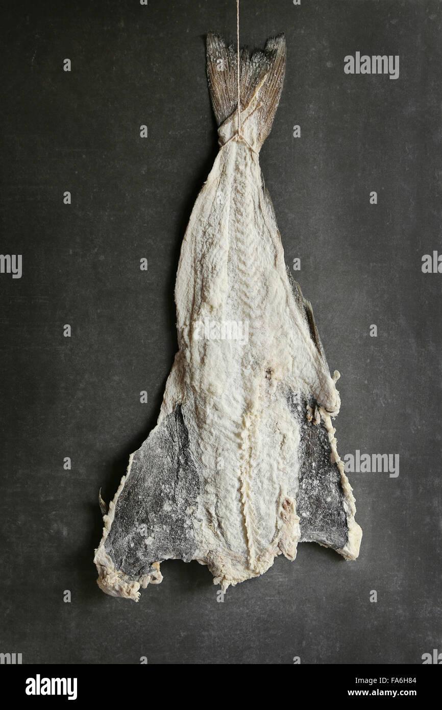 Gesalzener Kabeljau Fisch zum Trocknen aufhängen Stockbild