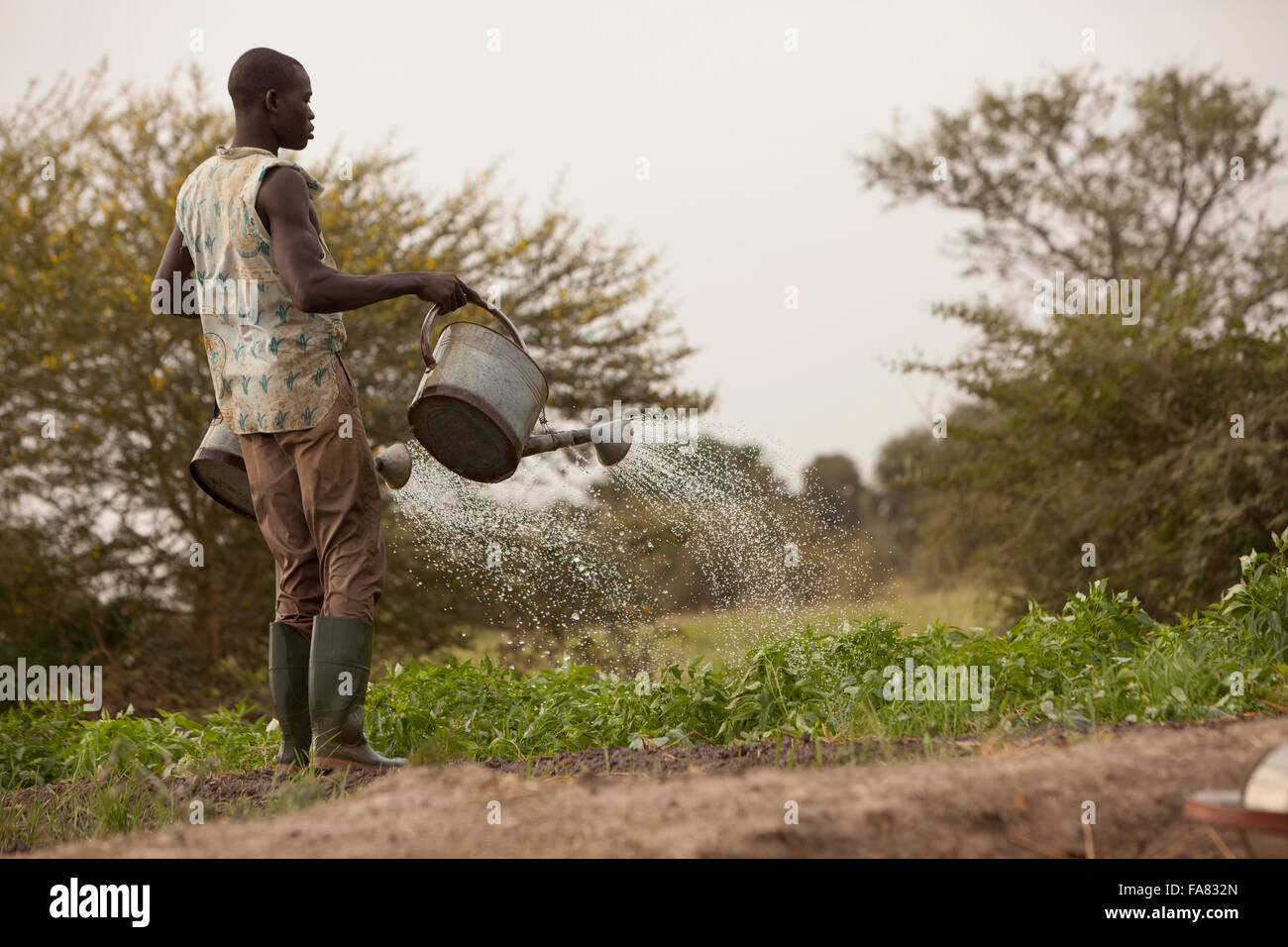Ein Kleinbauer Gewässer seinen Gemüsegarten in Di-Abteilung, Burkina Faso. Stockfoto