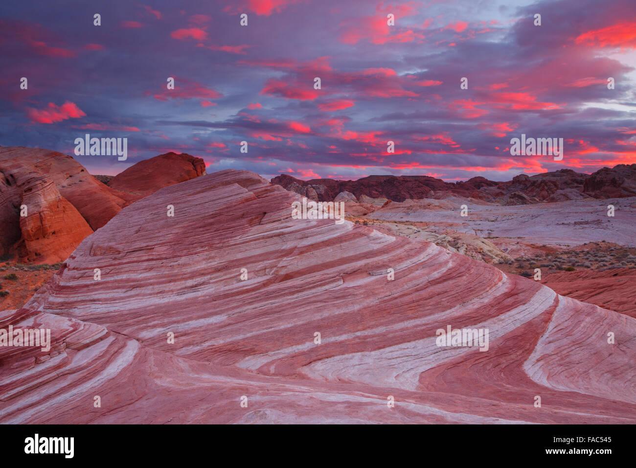 Feuer-Welle, Valley of Fire State Park, in der Nähe von Las Vegas, Nevada. Stockbild