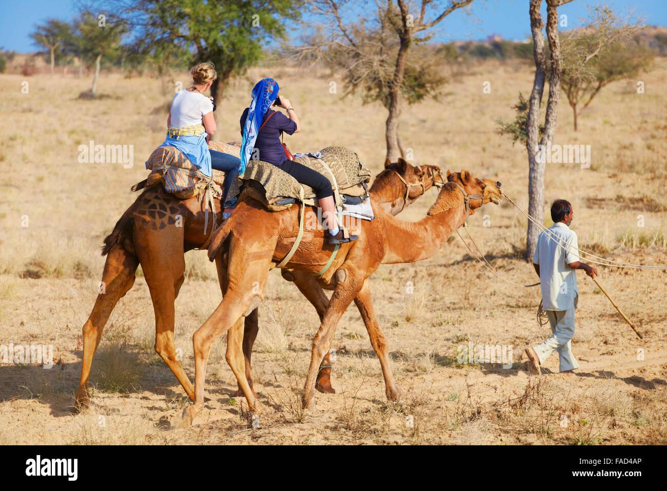 Zwei Kamele mit Touristen reiten Safari auf der Thar-Wüste in der Nähe von Jaisalmer, Indien Stockbild
