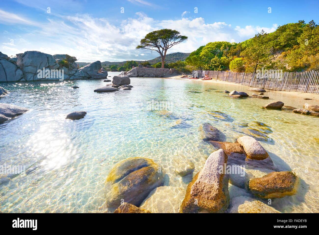 Ostküste Palombaggia Beach, Porto-Vecchio, Korsika, Frankreich Stockfoto