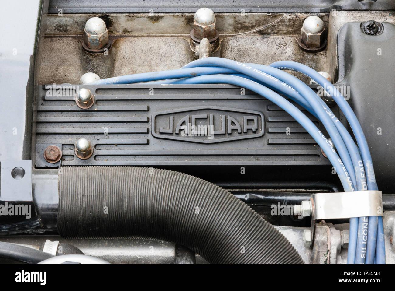 England Britische Oldtimer Jaguar Xj 42 C Motor Unter Der Xjs Engine Wiring Motorhaube Mit Markennamen Und Blaue Kabel