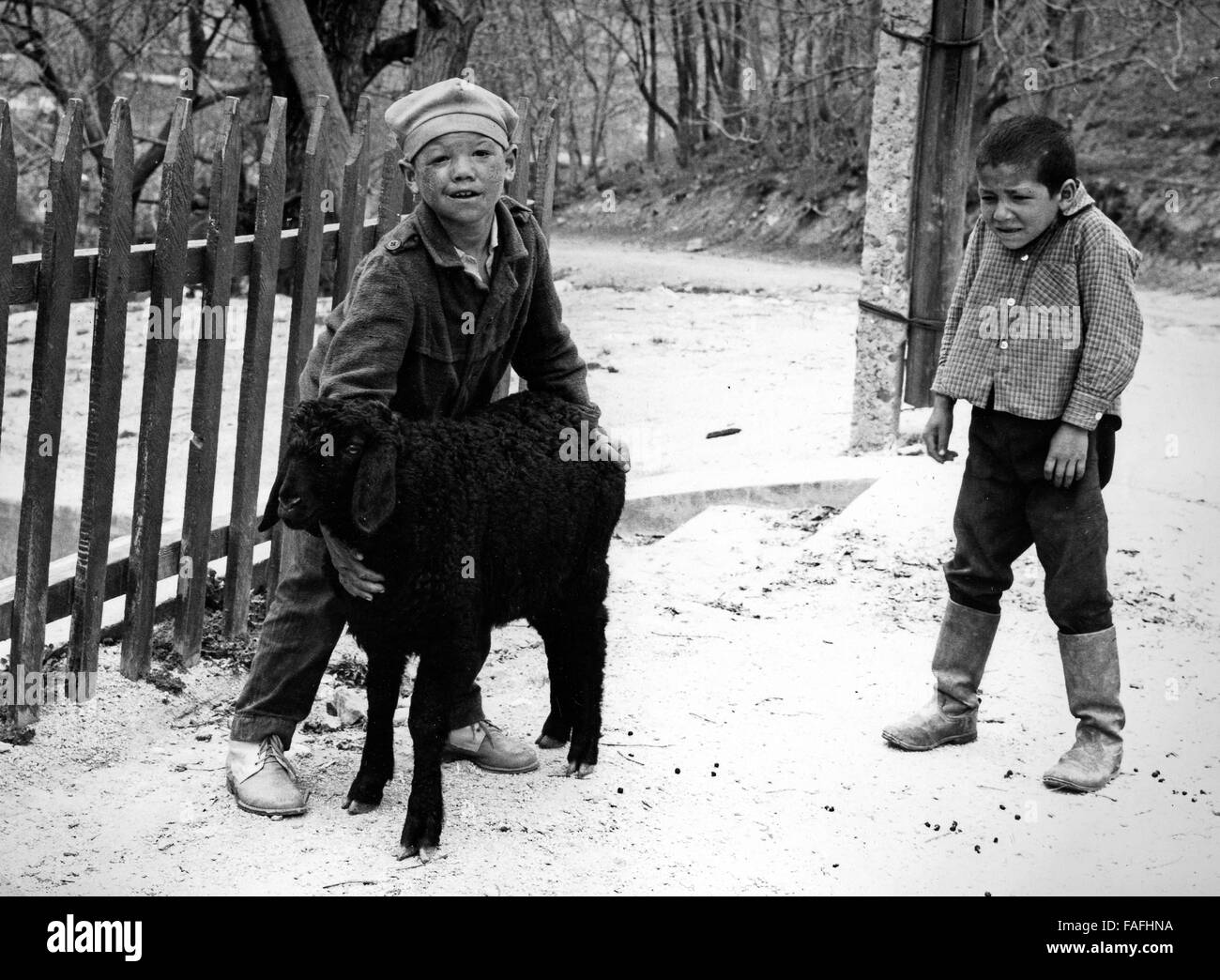 Zwei Jungen Mit Einem Karakulschaf Bei Samarkand in Usbekistan Bezirkshandstempel 1970er Jahre. Zwei jungen mit Stockbild