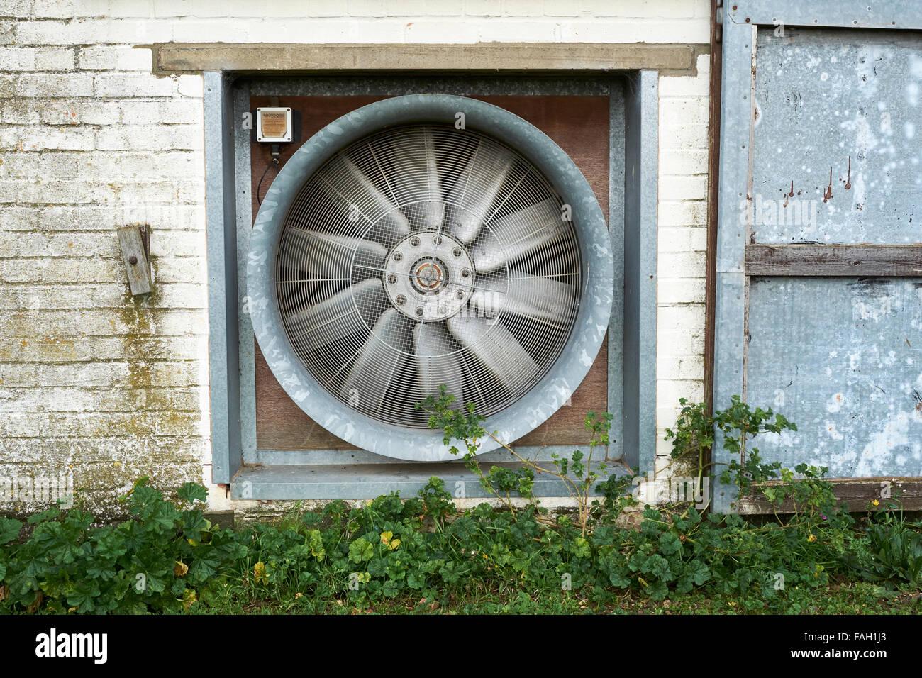 Industrielle Trocknung Lüfter in einer landwirtschaftlichen Getreide Lagerhalle gebaut. Stockbild