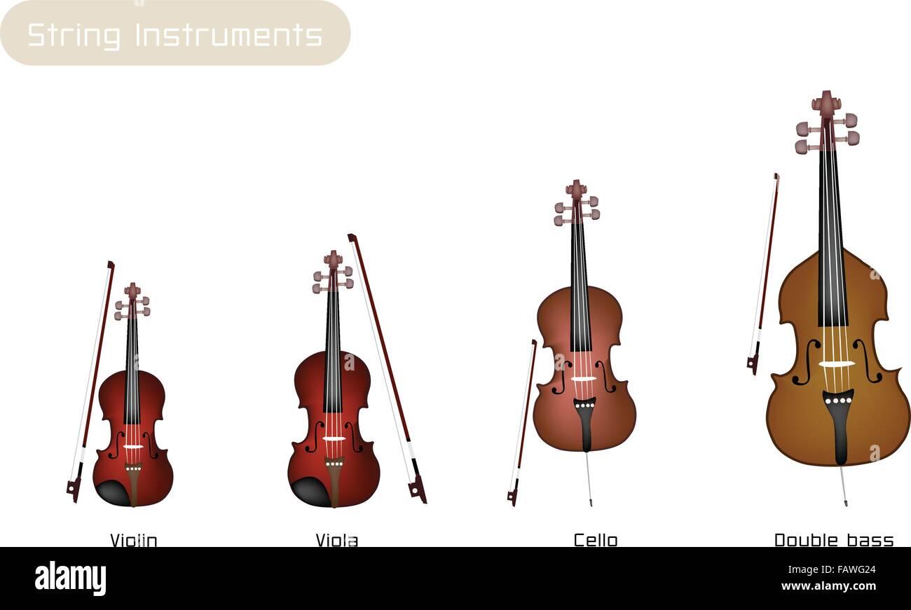 Kontrabass Cello
