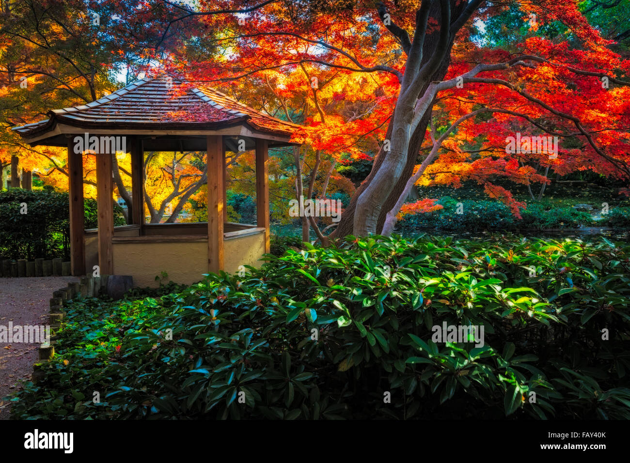 red japanese tea house stockfotos red japanese tea house. Black Bedroom Furniture Sets. Home Design Ideas