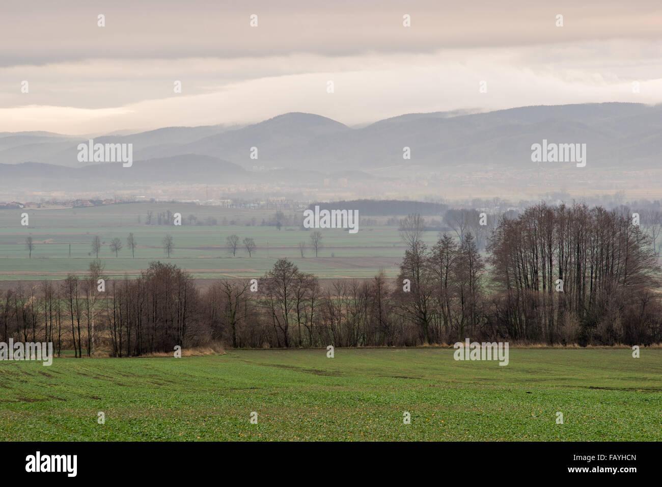 Eulengebirge in eine trübe Dezembermorgen niedriger Schlesien Polen Eulengebirge Stockbild