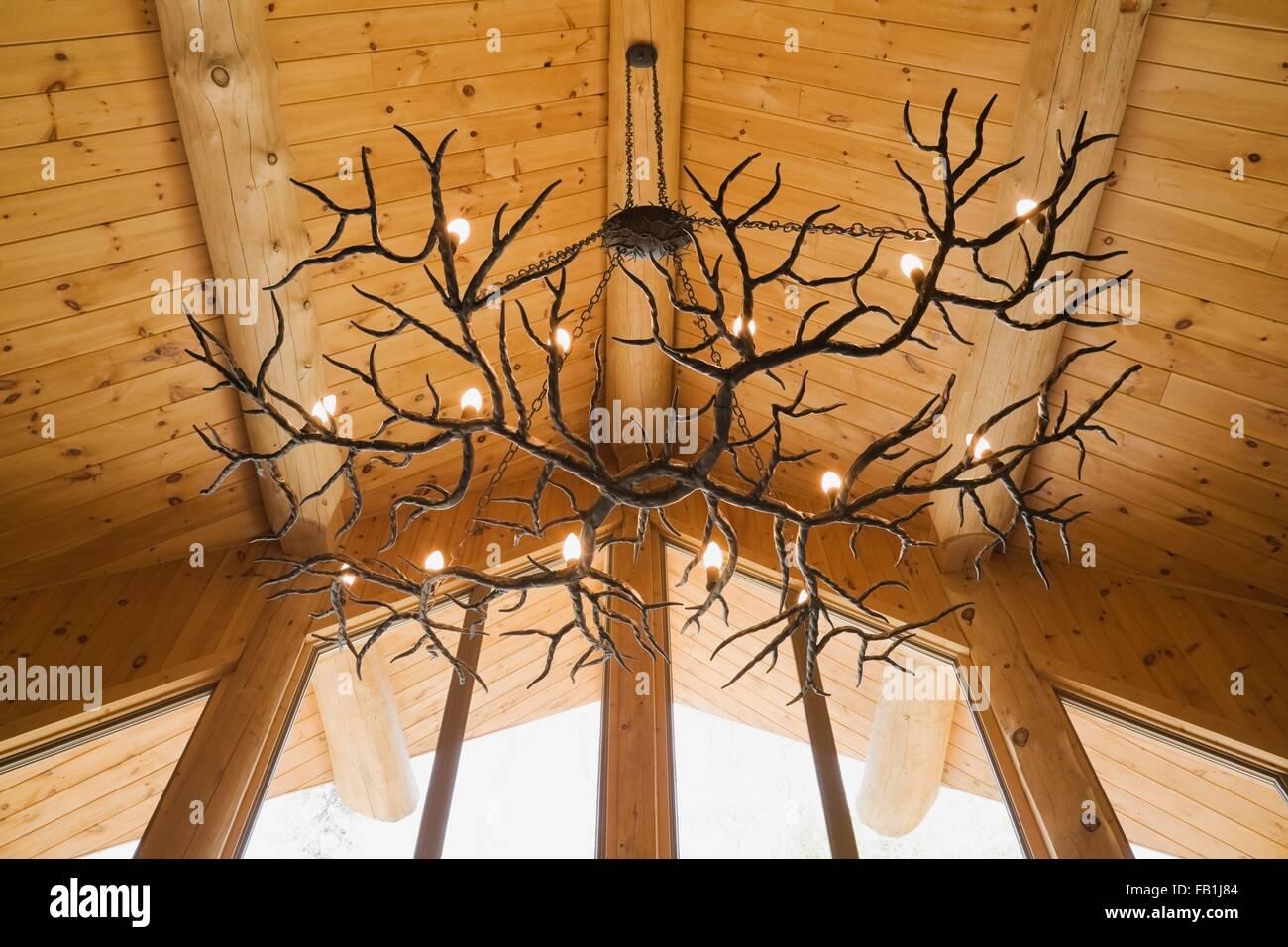 Kronleuchter Geweih ~ Geweih kronleuchter hängen von eastern white pine gewölbte decke
