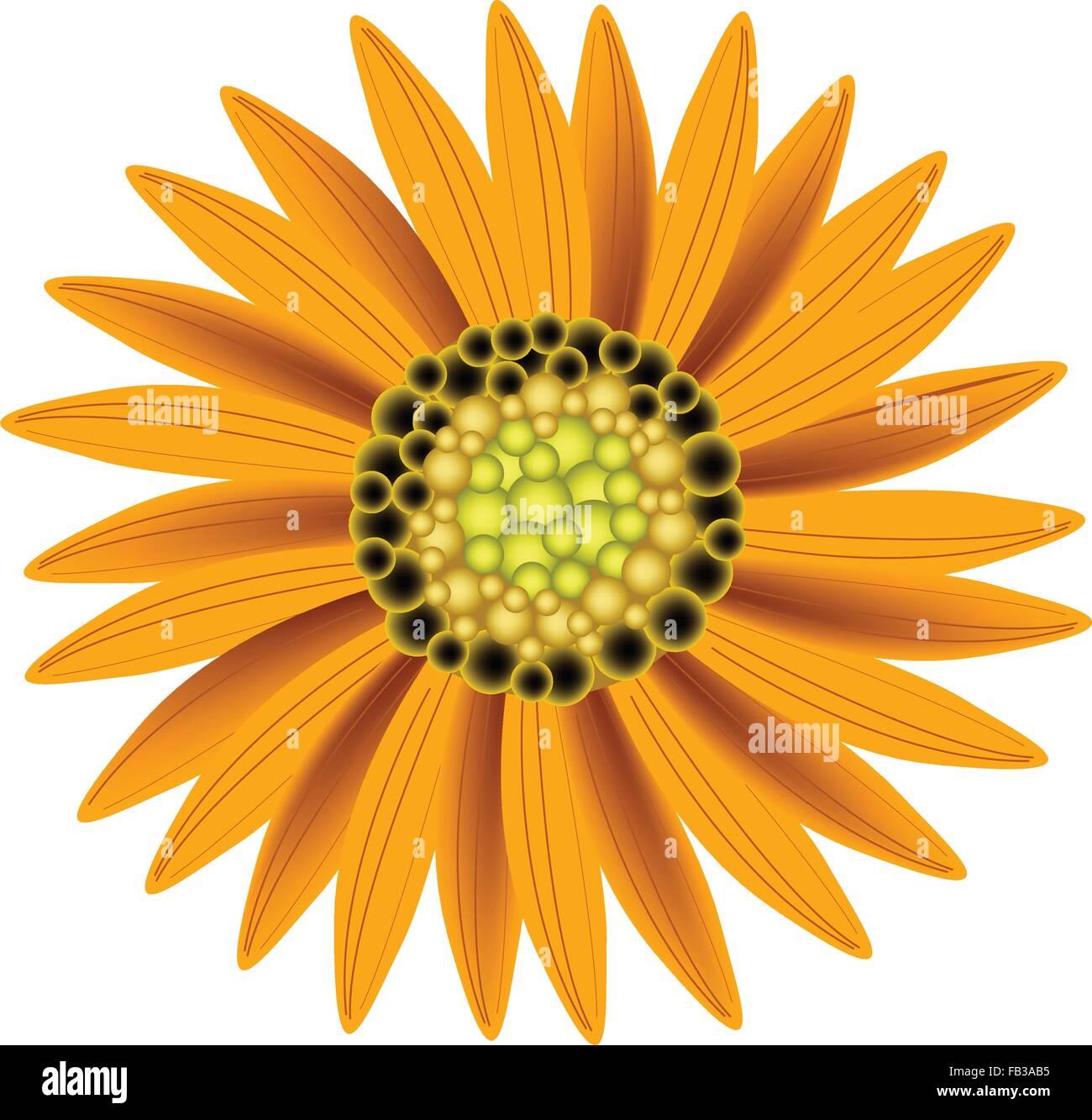 Schöne Blume, Illustration helle und schöne Orange Farben von ...