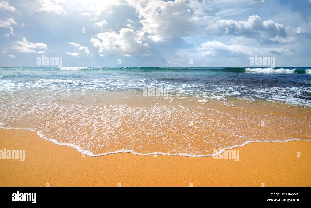 Wellen des Ozeans auf einer sandigen Küste Stockbild