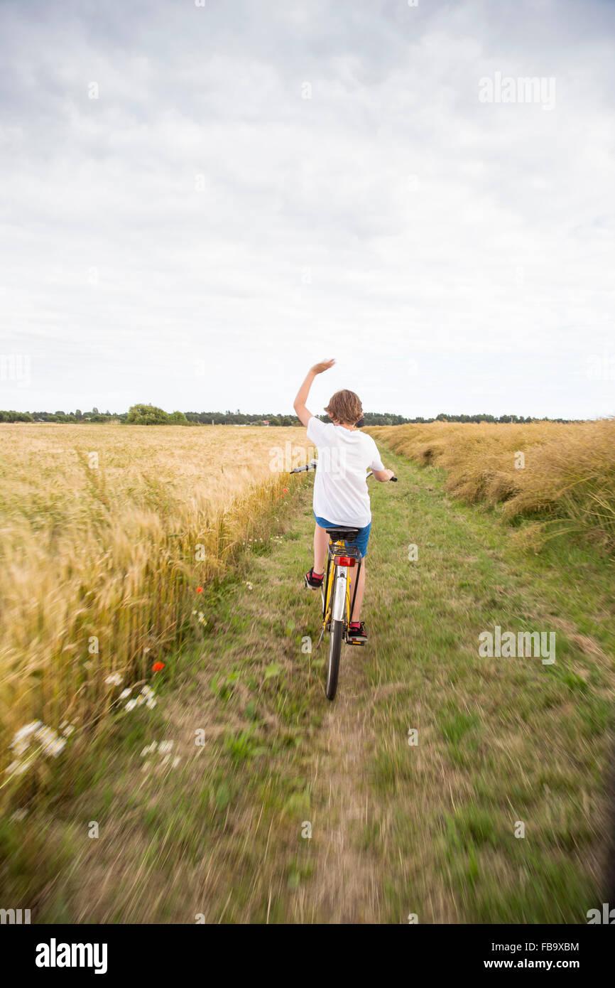Schweden, Skane, Soderslatt, Beddinge, Boy (12-13) Reiten Fahrrad im Weizenfeld Stockbild