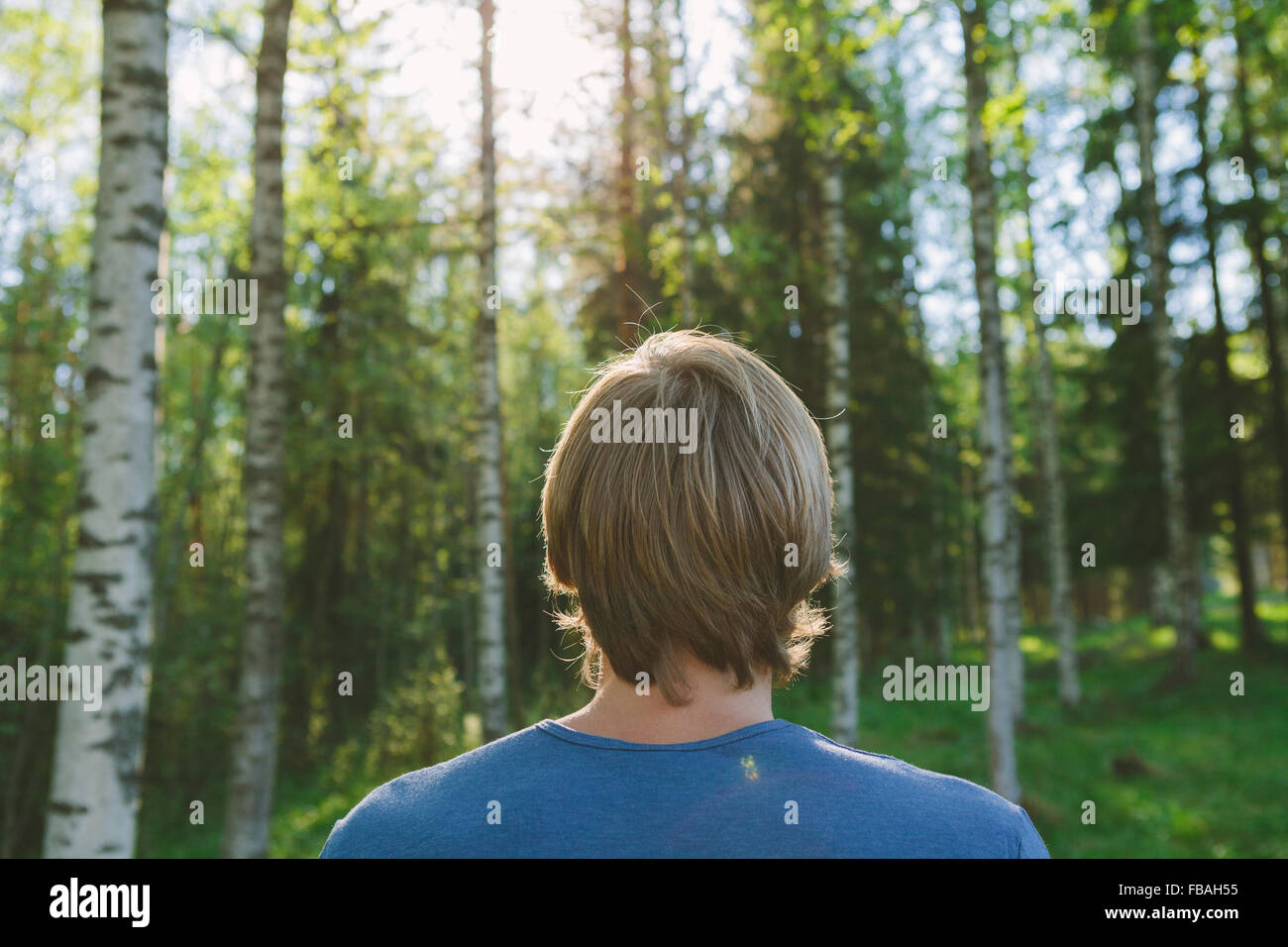 Finnland, Mellersta Finnland, Jyväskylä, Saakoski, junger Mann, Blick auf Wald Stockbild