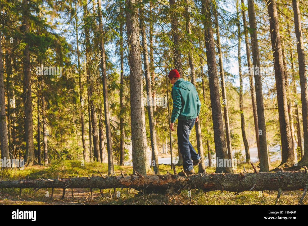 Finnland, ESO, Kvarntrask, jungen Mann zu Fuß auf Stamm von umgestürzten Baum im Wald Stockbild