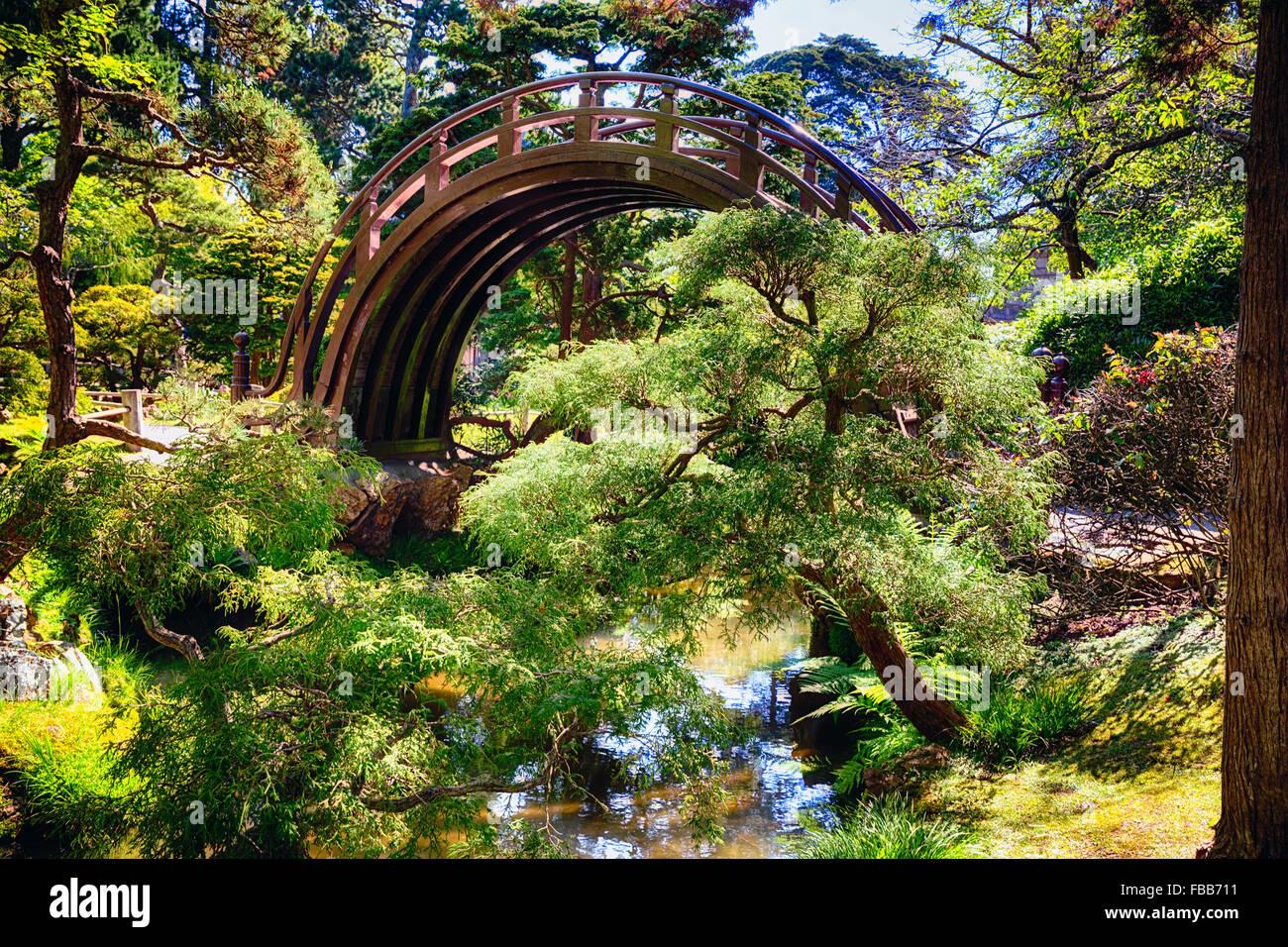Niedrigen Winkel Ansicht einer Mond-Brücke über einen kleinen Bach in einem japanischen Garten, Golden Stockbild