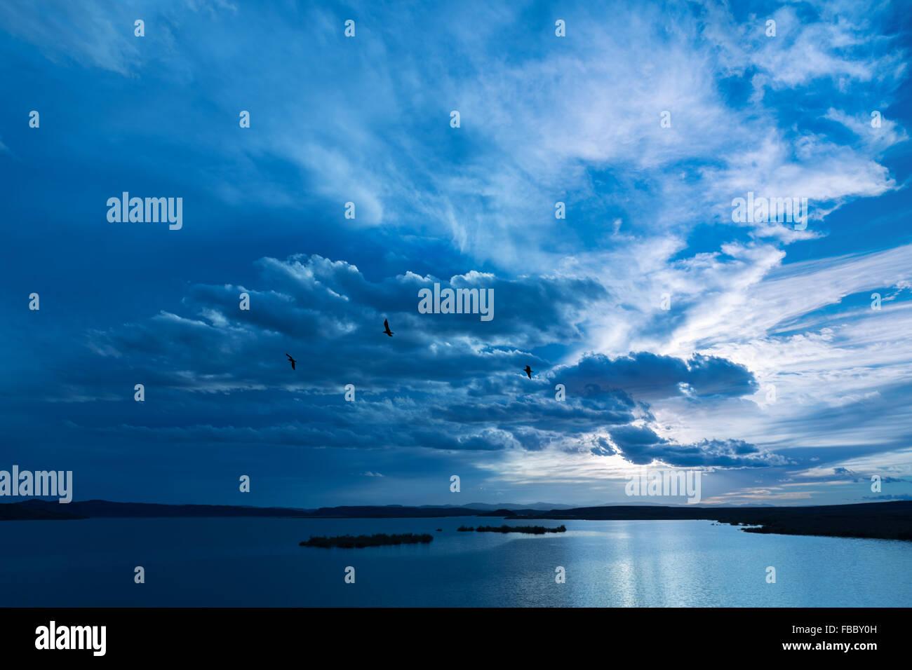 Vögel fliegen gegen dunkel bewölkter Himmel über dem Wasser. Stockbild