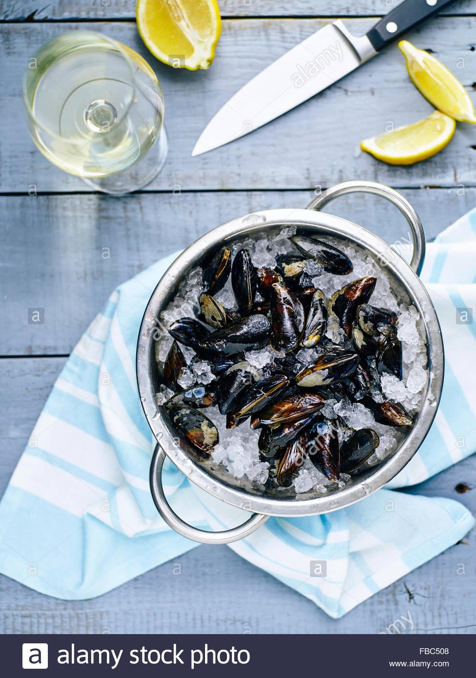 Muscheln auf Eis mit Zitrone und Weißwein Kochen bereit Stockbild