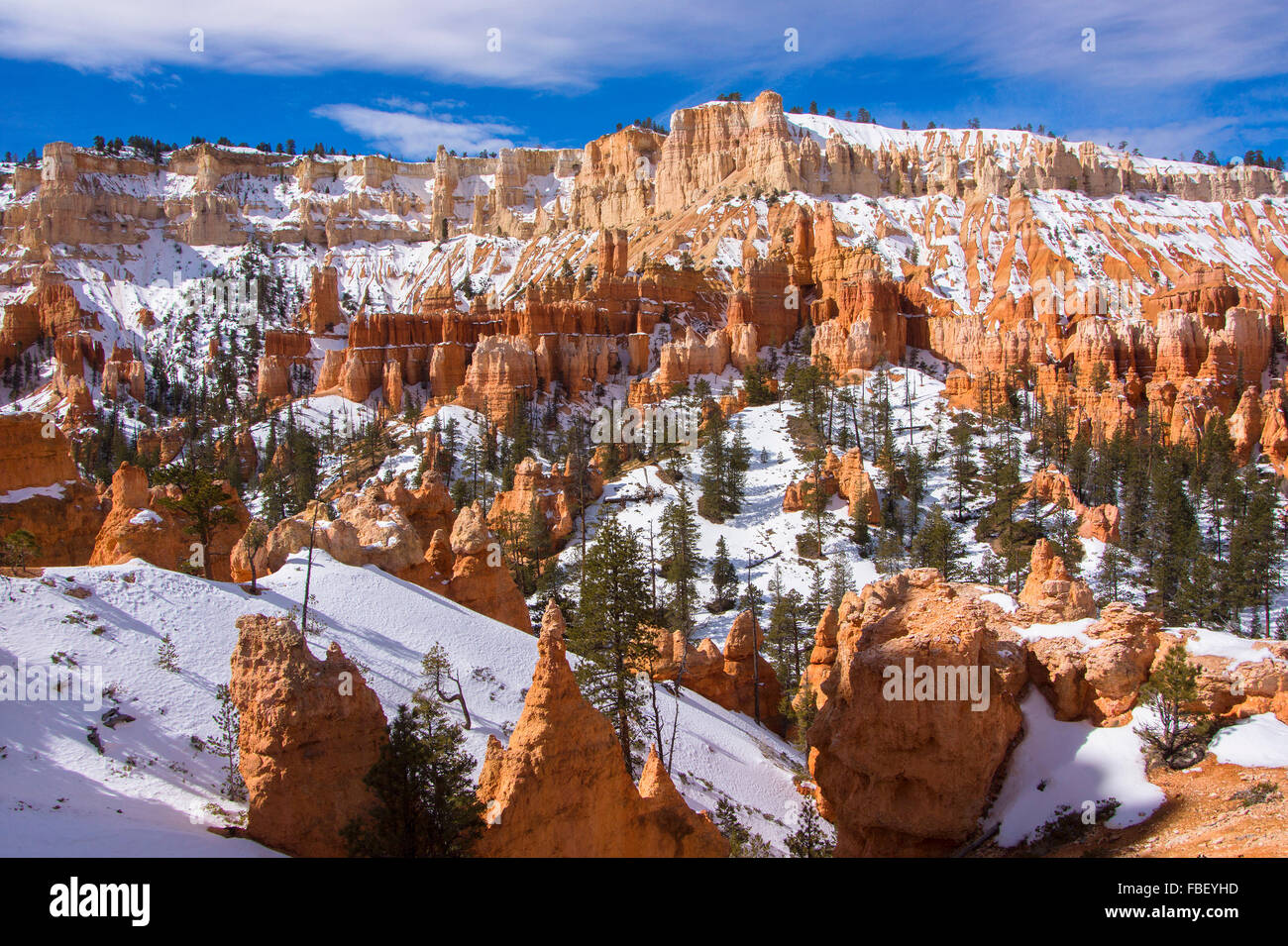 Winter im Bryce Canyon Stockbild