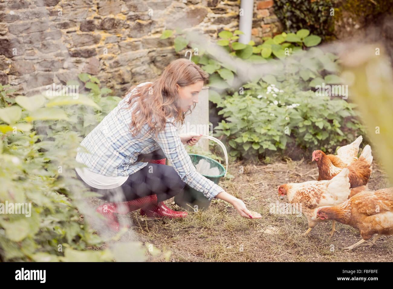 Junge Frau, die Hühner füttern Stockbild