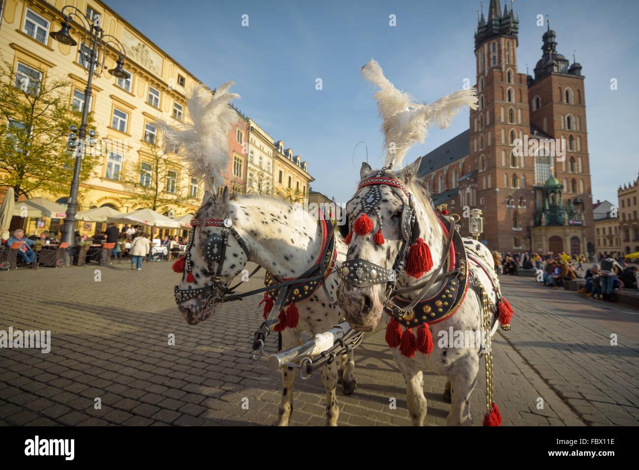 Krakau, Polen - 13. November 2015: Kutschen am Hauptplatz in Krakau in einem Herbsttag, Polen am 13. November 2015 Stockbild