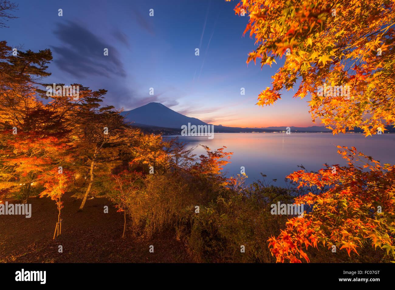 Mt. Fuji, Japan im Herbst vom Ufer des Sees Yamanaka. Stockbild