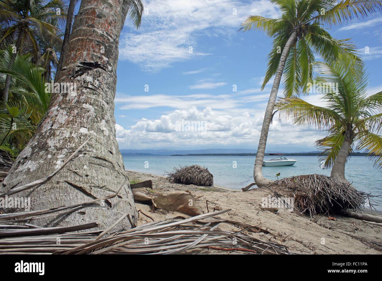 Karibik-Urlaub Stockbild