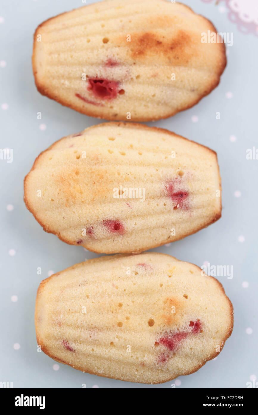 Erdbeeren-madeleines Stockbild