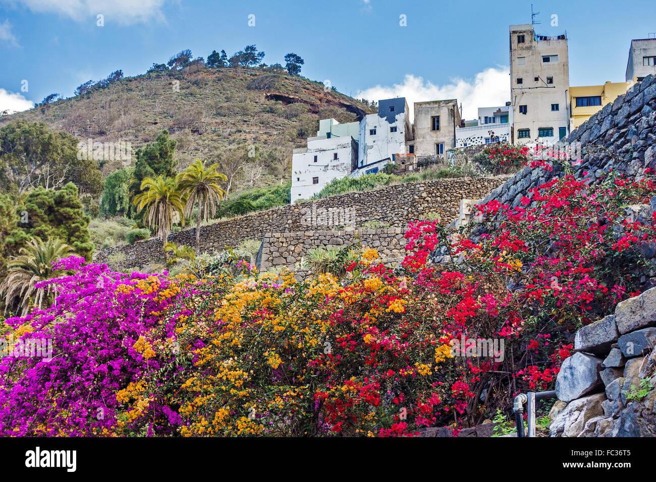 Arucas In Gran Canaria Kanaren Spanien Stockbild