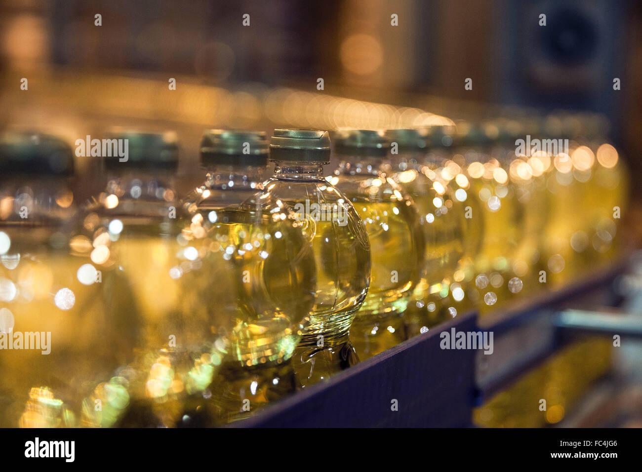Detalhe de Envase de Garrafas de Óleo vegetal de Soja Em agroindústria Stockbild