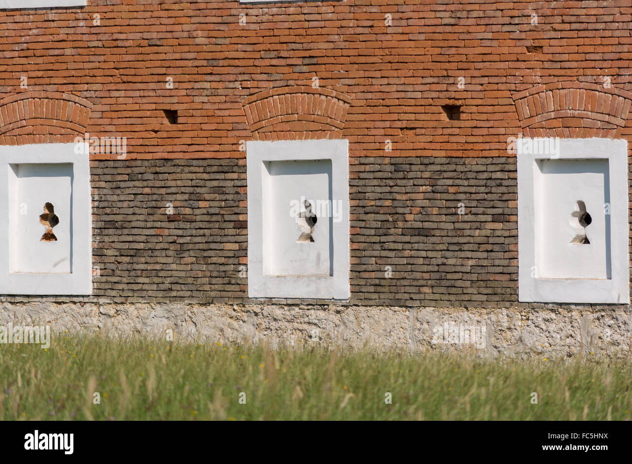 Mauer   Dekoratives Fensterfassaden