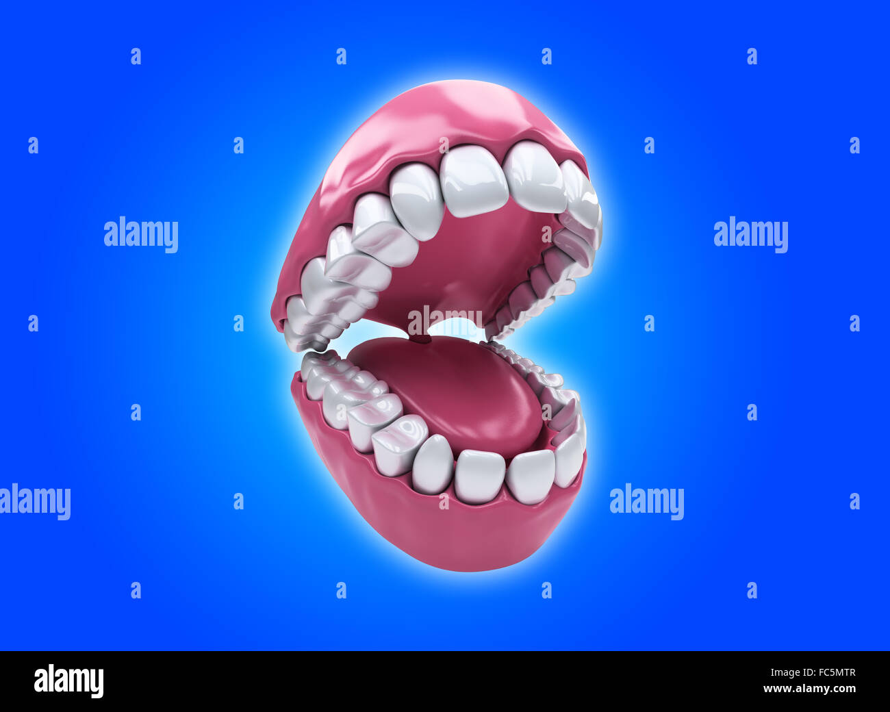 Bicuspid Stockfotos & Bicuspid Bilder - Alamy