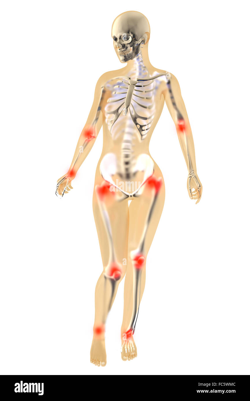 Gemütlich Verständnis Weibliche Anatomie Zeitgenössisch - Anatomie ...
